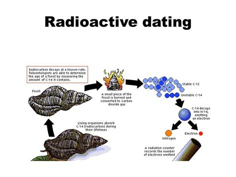 Distinguish between relative and absolute dating macromex jpg 960x720